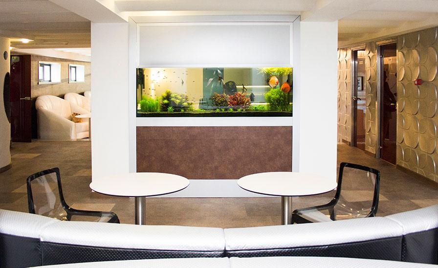 Cromatica design Interior restaurant Aquazure